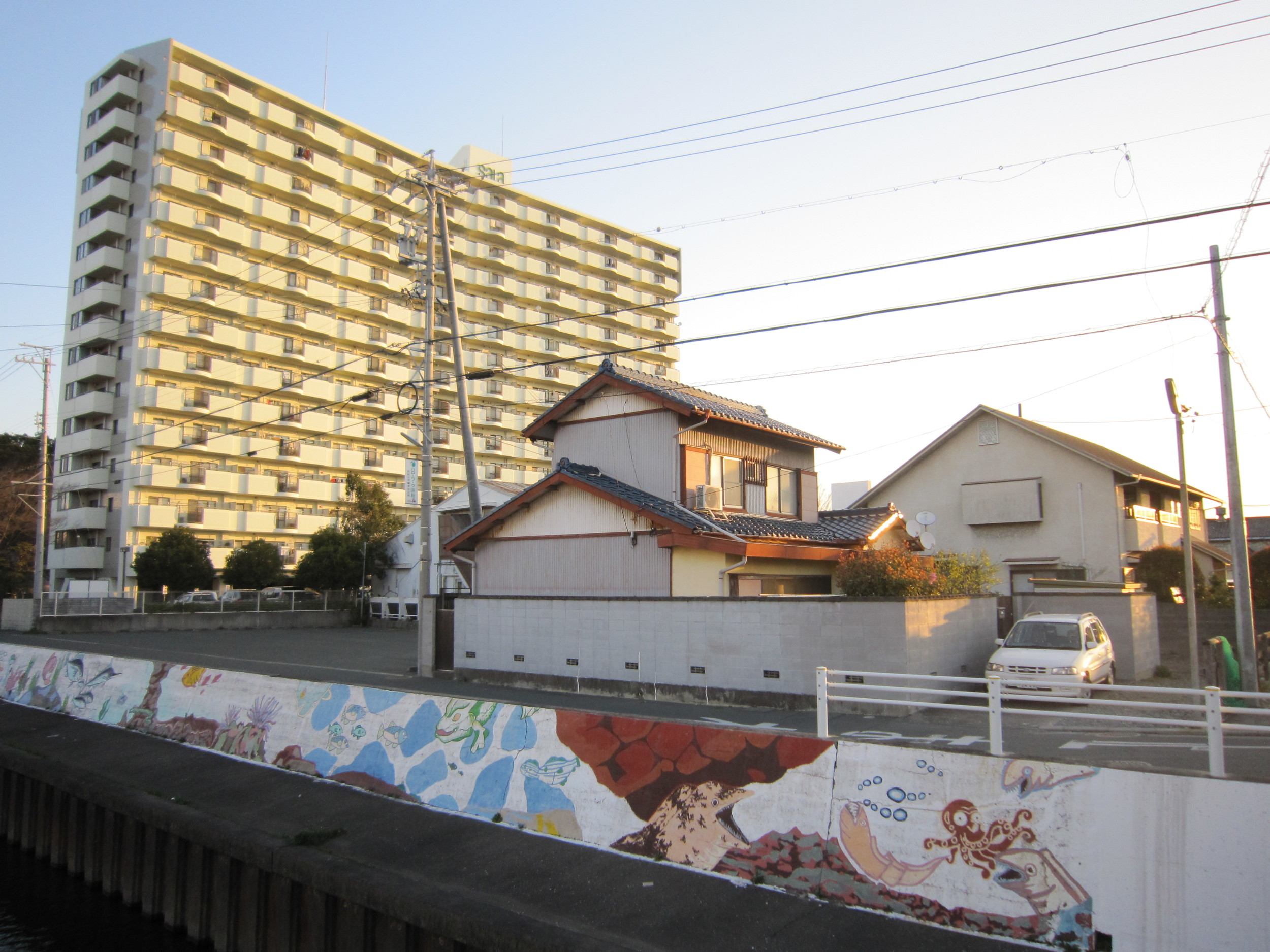 A house and apartment building in Hamamatsu