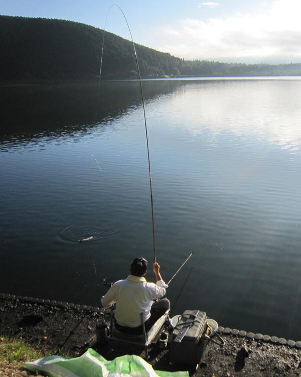 An early rising fisherman on Lake Tanuki