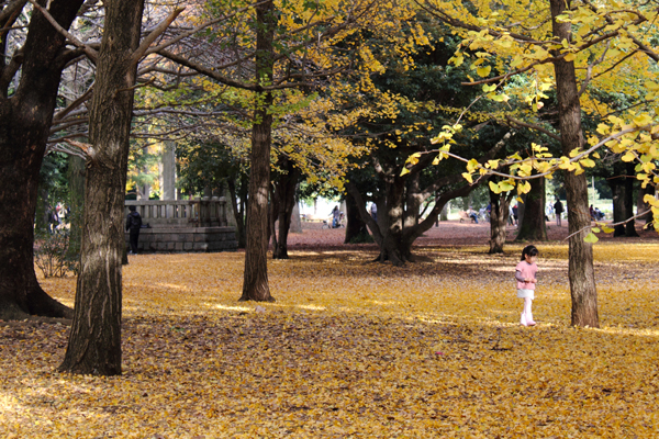 A little girl exploring the park.