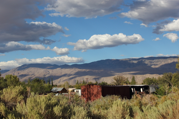 Boxcars with mountains in the background.