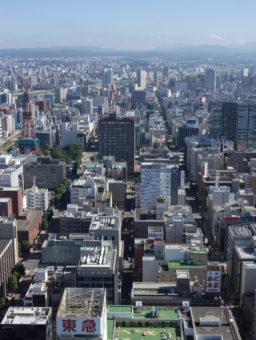 Sapporo-from-JR-Tower.jpg
