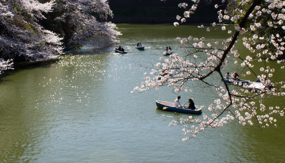 imperial_palace_rowing