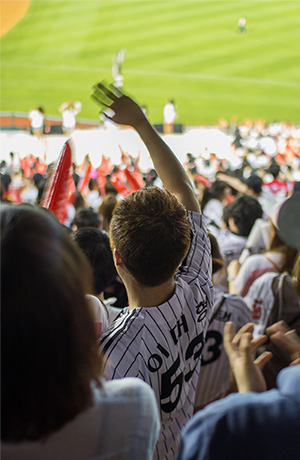 korean_baseball_fan
