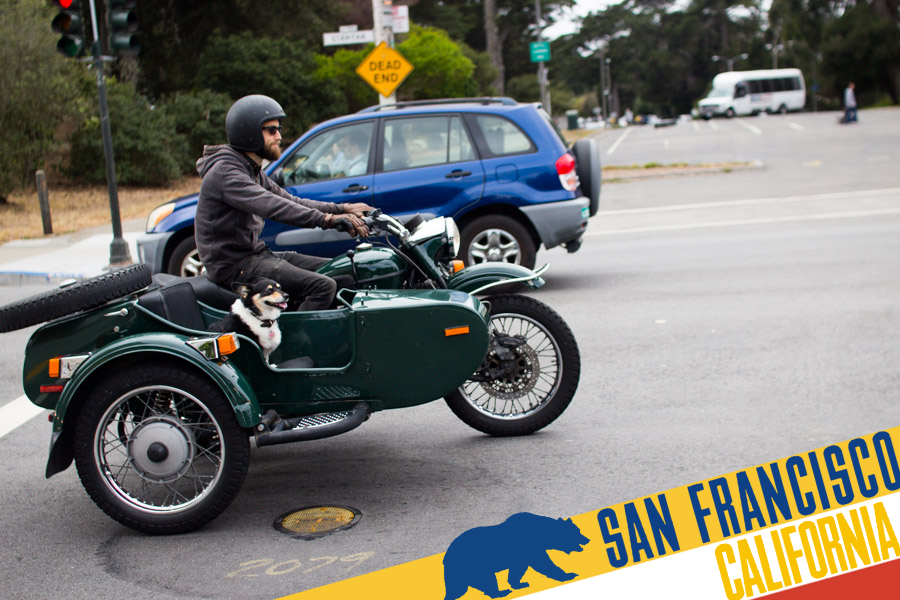 SF_dog_in_sidecar