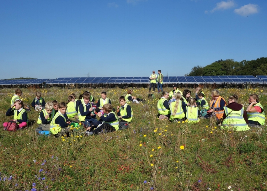 Schoolchildren enjoying a picnic at Pashley solar farm.