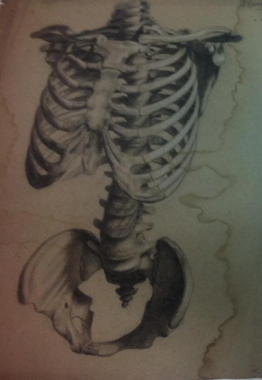 torso 1.jpg