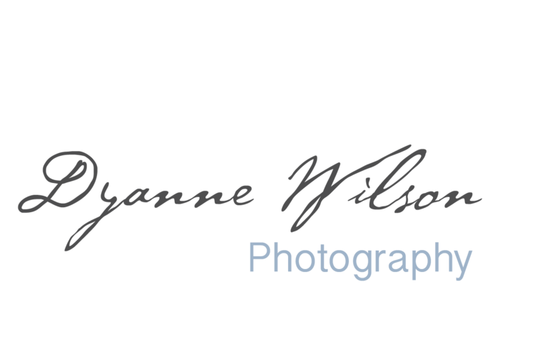 Dyanne Wilson - Editorial, Portrait and Fine Art Photography