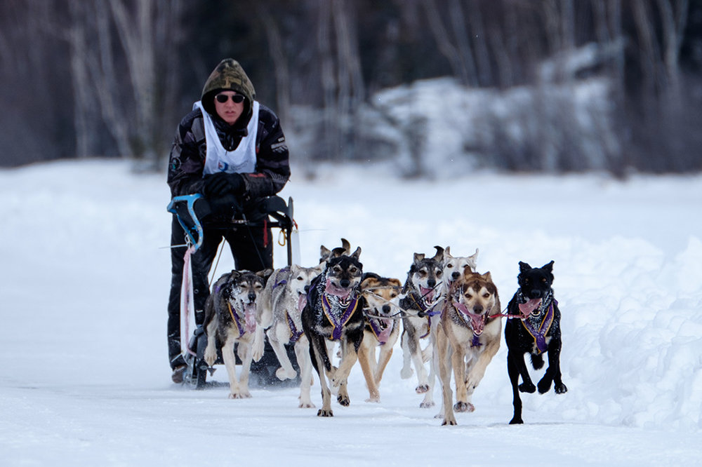 Dog Sled Races-135.jpg