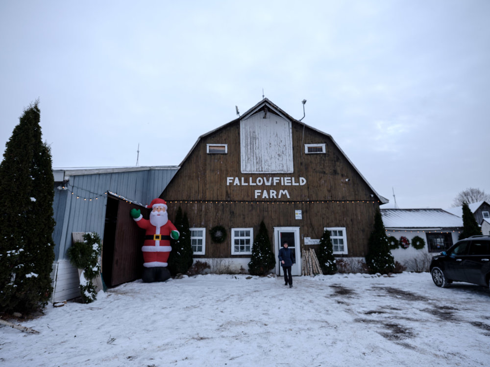 Fallowfield Tree Farm