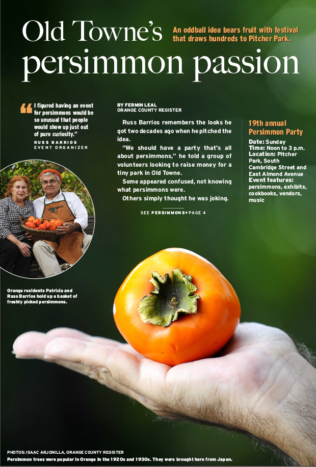 Persimmon passion centerpiece news design