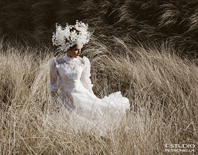 %22bride in a strange land%22 1 © 2013 heather rhodes studio petronella all rights reserved 500pxh.jpg