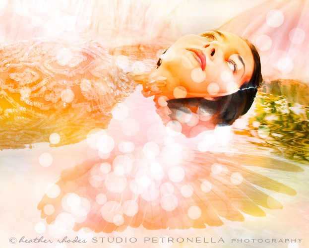 %22drench your wings in honey%22 © 2014 heather rhodes studio petronella all rights reserved 500pxh.jpg