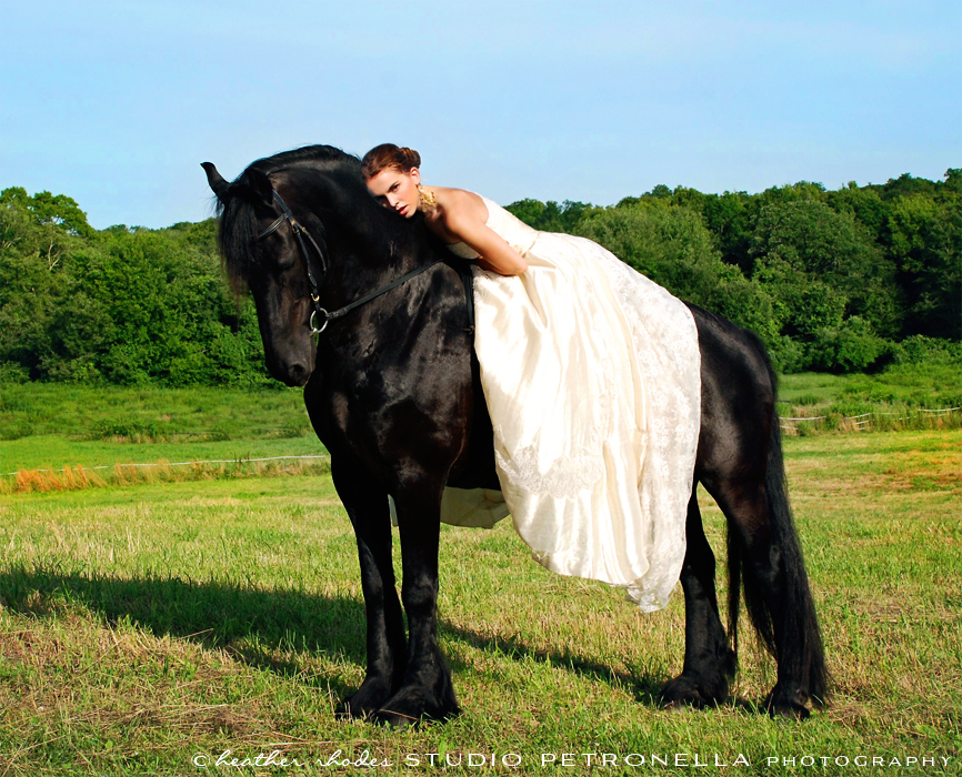 %22a girl and her horse%22 16 © 2015 heather rhodes studio petronell.jpeg