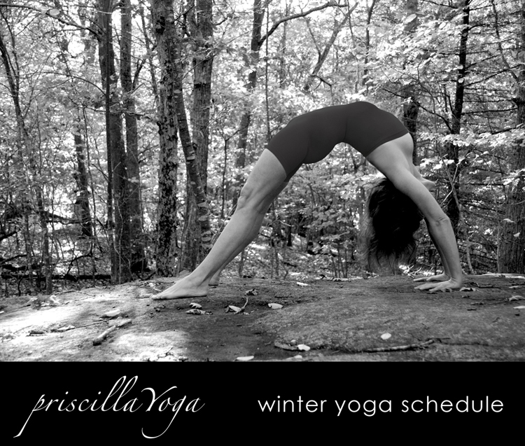 priscilla+yoga+winter+schedule+top+ •++photo+&+design+©+heather+rhodes+for+studio+petronella.jpg