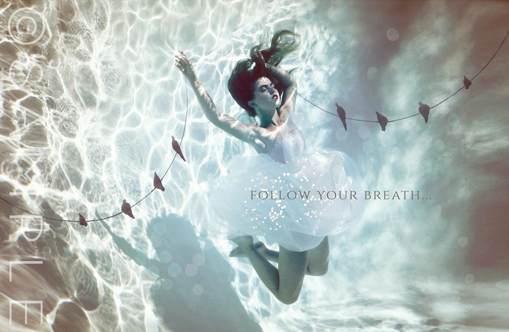 Follow Your Breath Down and in; into the temple of your body... One holy breath at a time, coming home to rest...