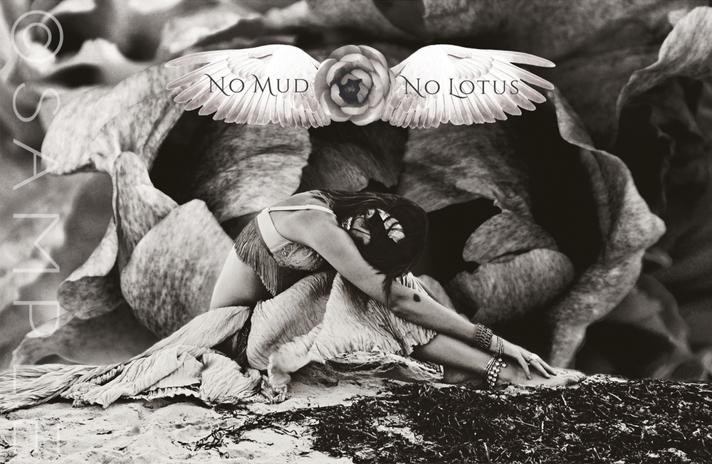 No Mud  No Lotus Lean into the nourishment of the darkness, the ebb time...   Surrender to the wisdom of the depths...