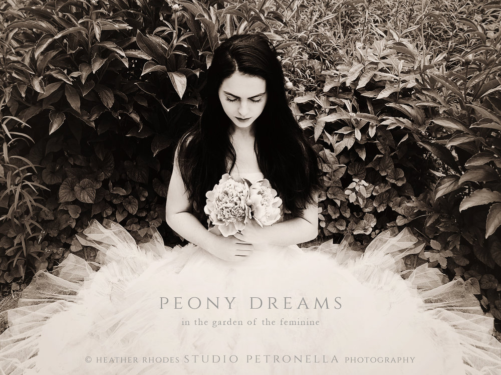 jane peony dreams © heather rhodes studio petronella all rights reserved.jpg