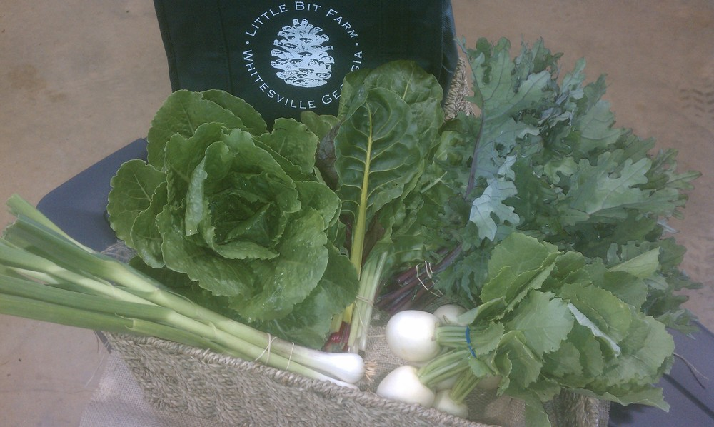 Here's an example of a Spring CSA share, from April 2014. It included leeks, romaine lettuce, swiss chard, kale, and sweet asian turnips.