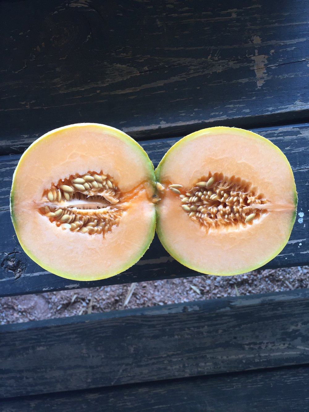 melons full size.JPG