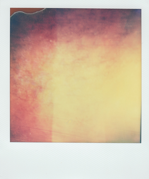 bruise-6 copy.jpg