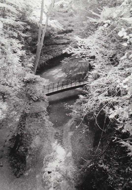 "Landscape Assignment (photo 1- black and white)   2012   Silver Gelatin Print   8""x10"""