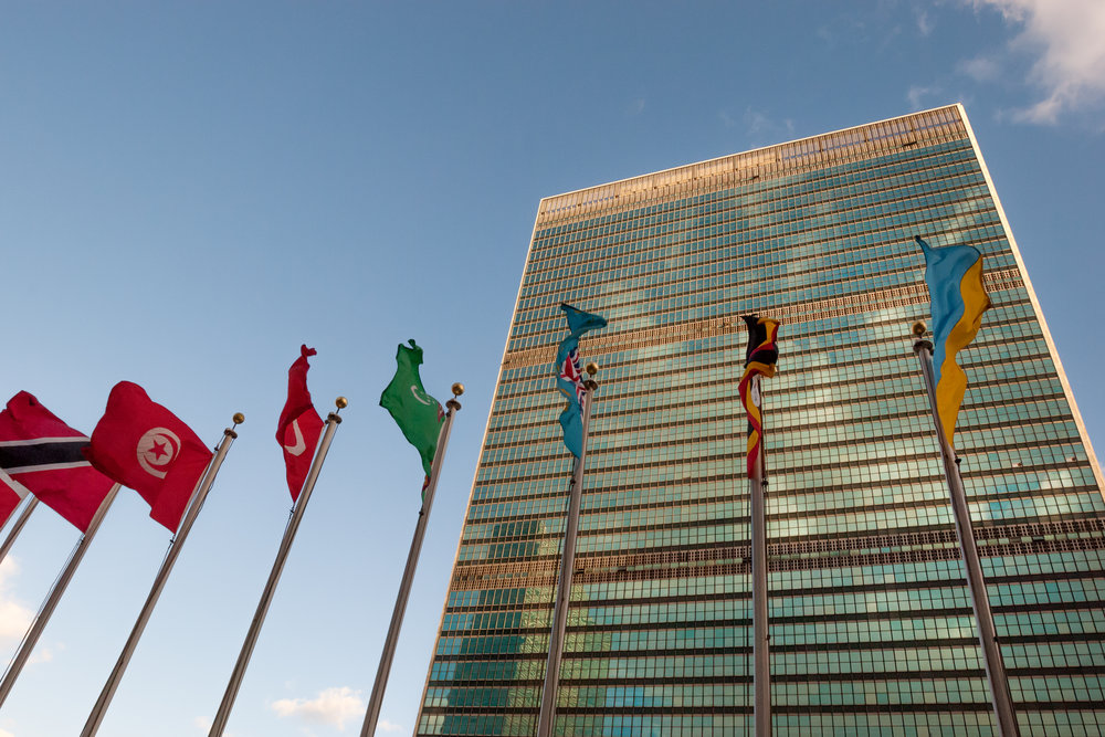 independent un personnel survey -