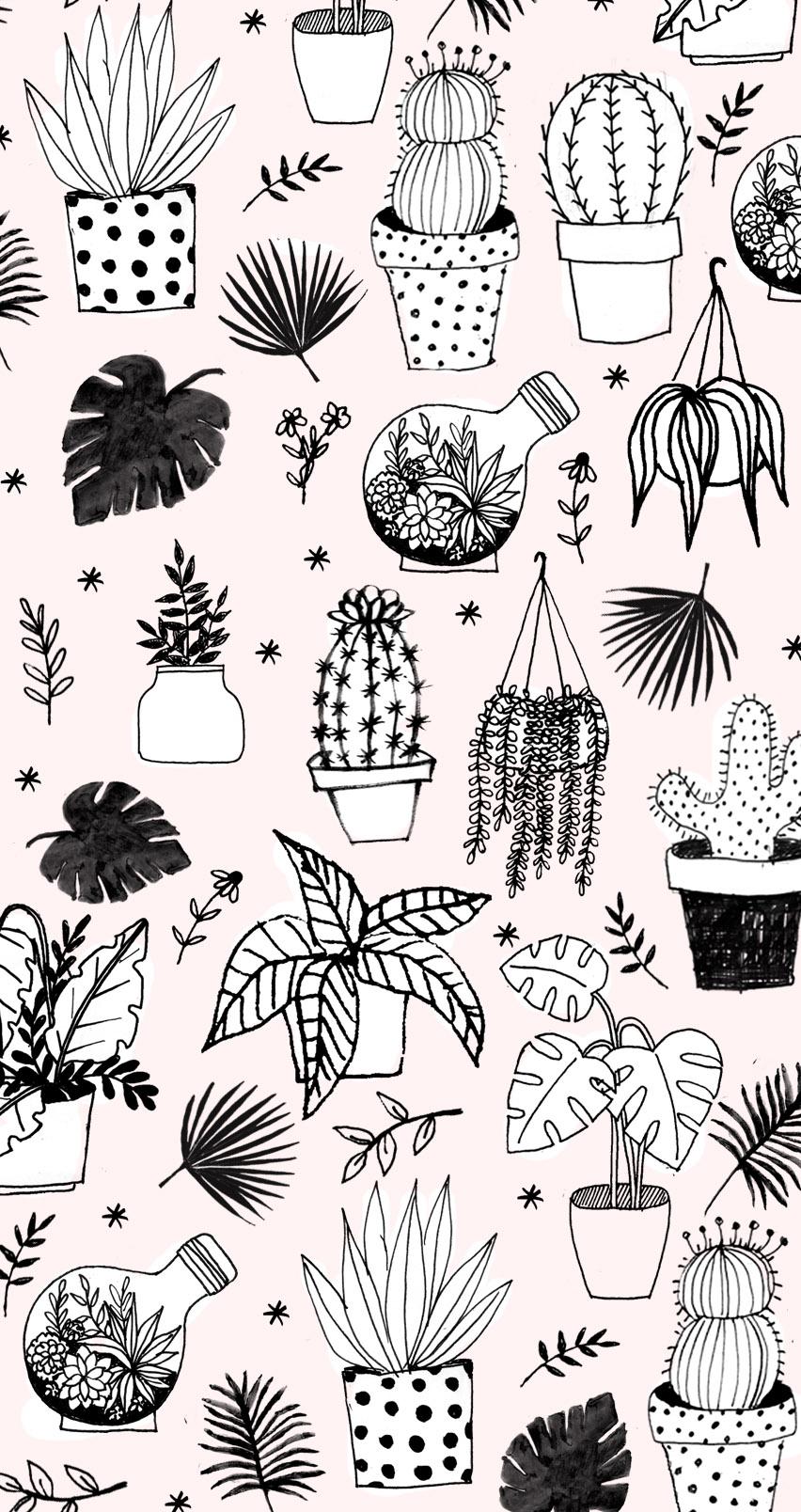 plantwallpaper.jpg