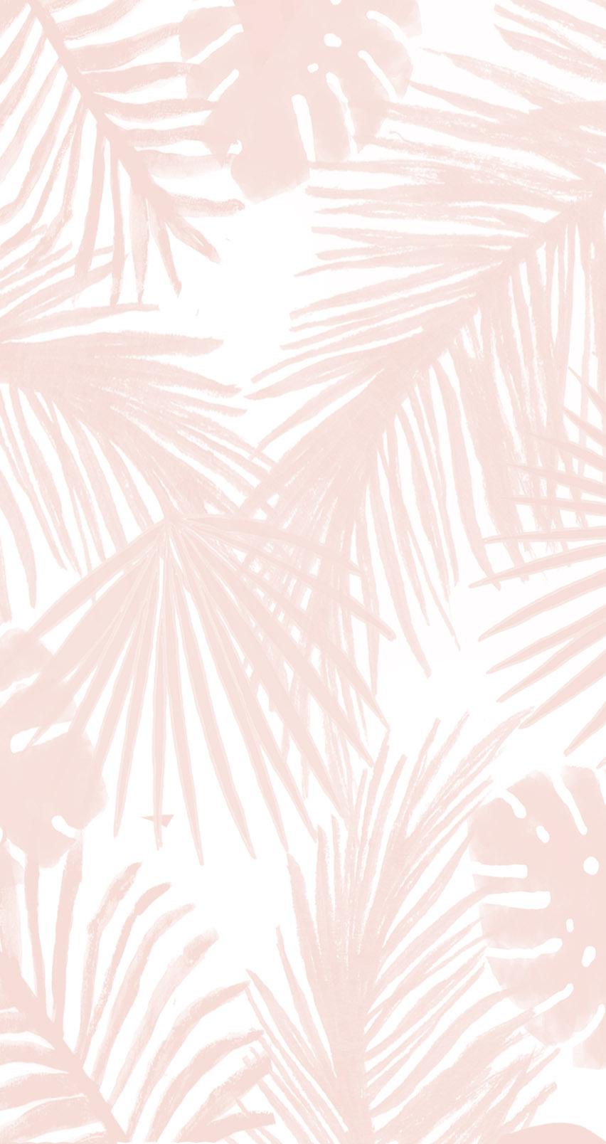 palmwallpaper.jpg