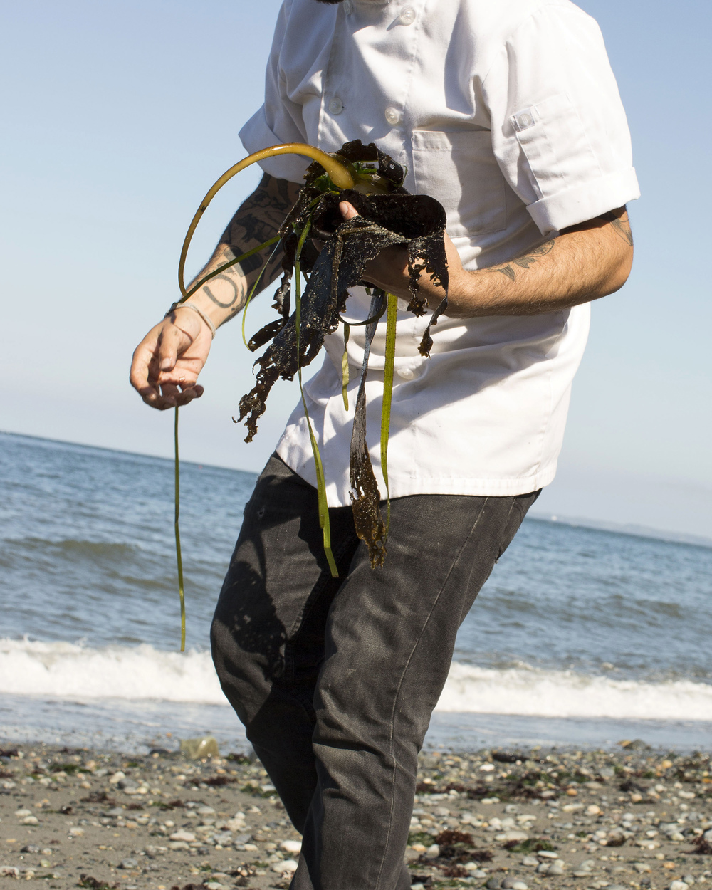seaweed rawb.jpg