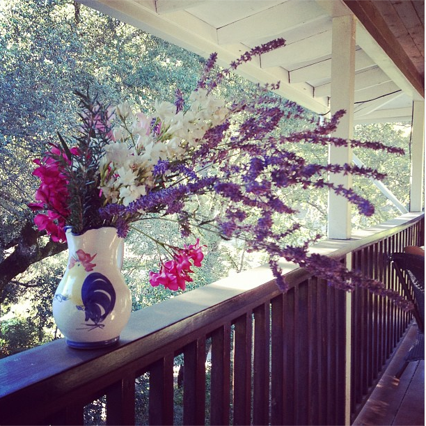 8/5/13  | Thanks to the Dowd family for letting us stay at their hacienda in Sonoma County for these past two weeks as we prepped for our inaugural journey. We made wildflower bouquets and had multiple peacock sightings.