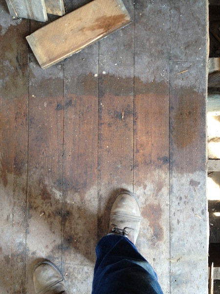 flooring and feet.jpg