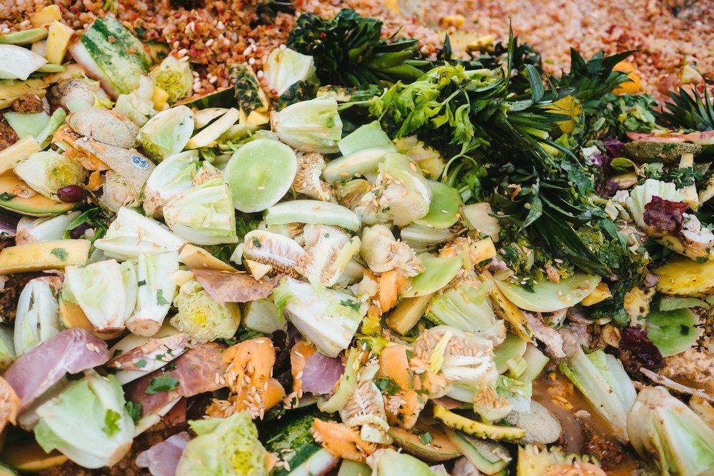 Food Waste-1.jpg