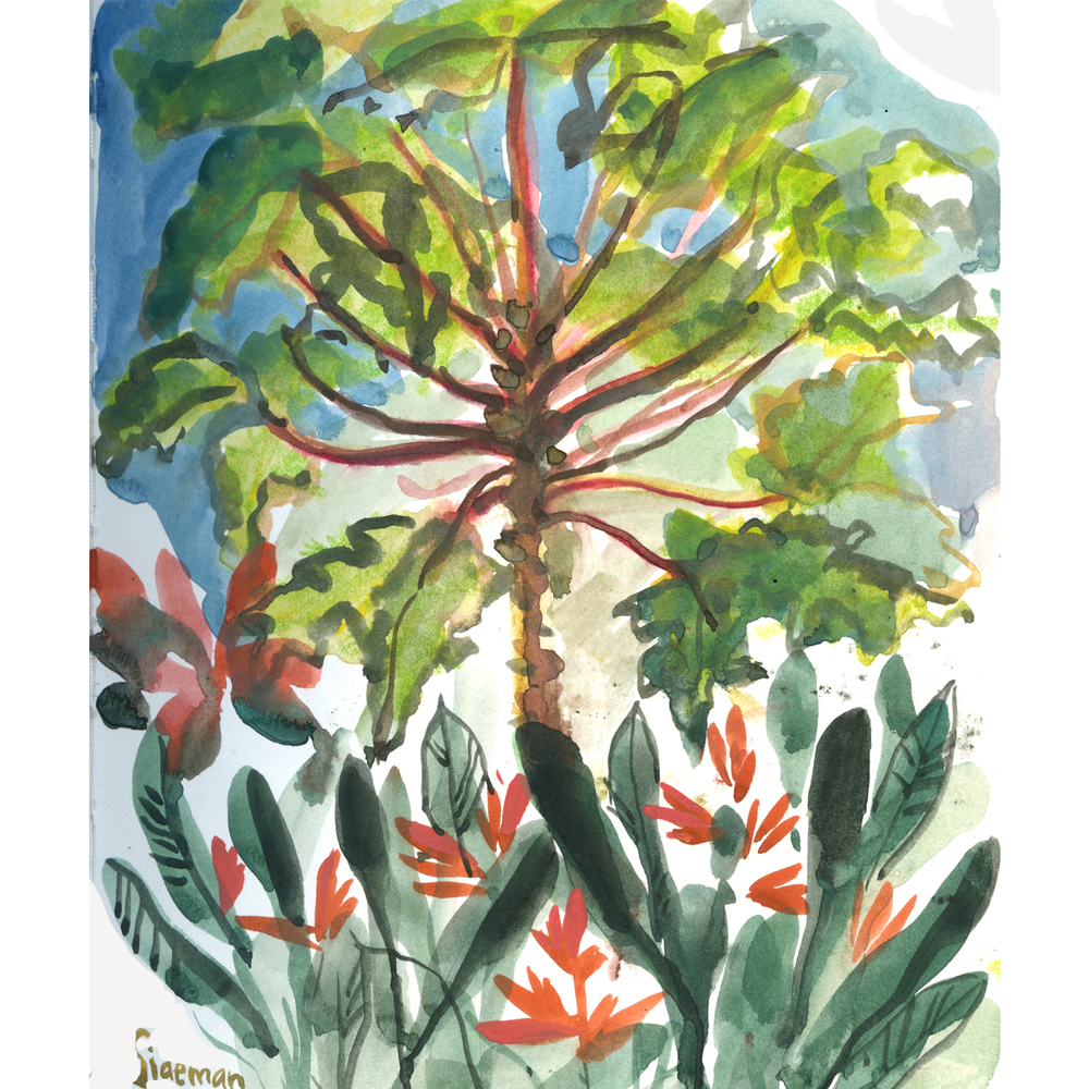 By this time about halfway into our trip - I began to really focus on painting plants and flowers.