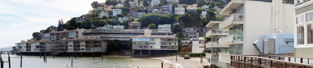 The Lady From Shanghai -  Whaler's Cove, Sausalito