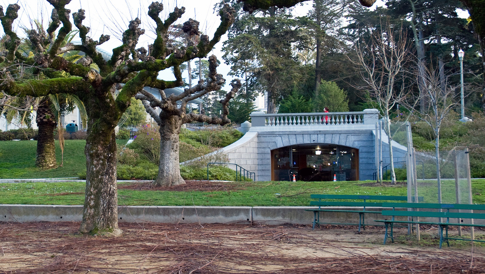 Petulia - Picnic in the Park