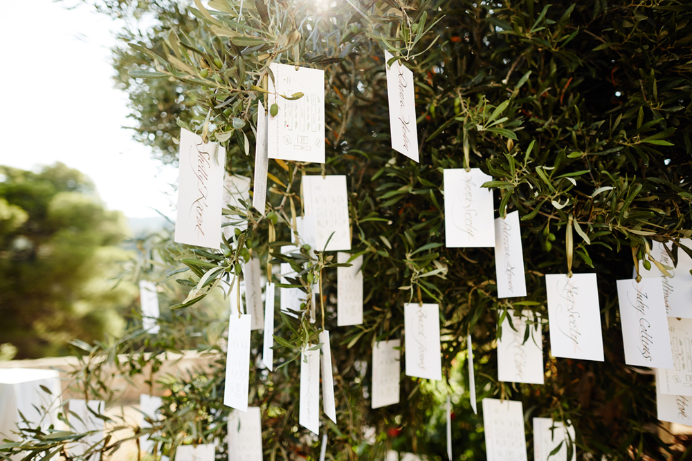 611A3427-aldenana-wedding.jpg