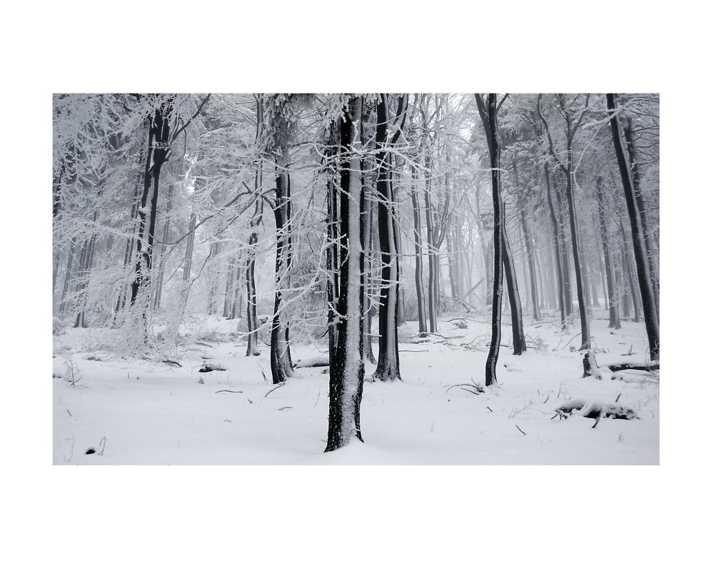 Feldberg, Hessen Feb11