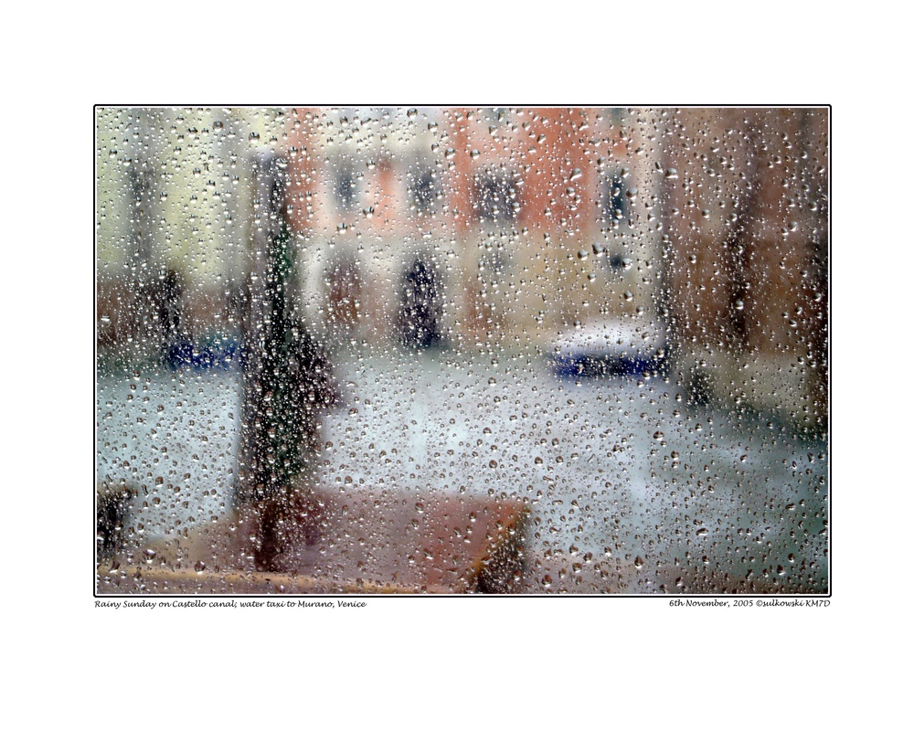 Copy of Rainy day water taxi_VENICE.jpg