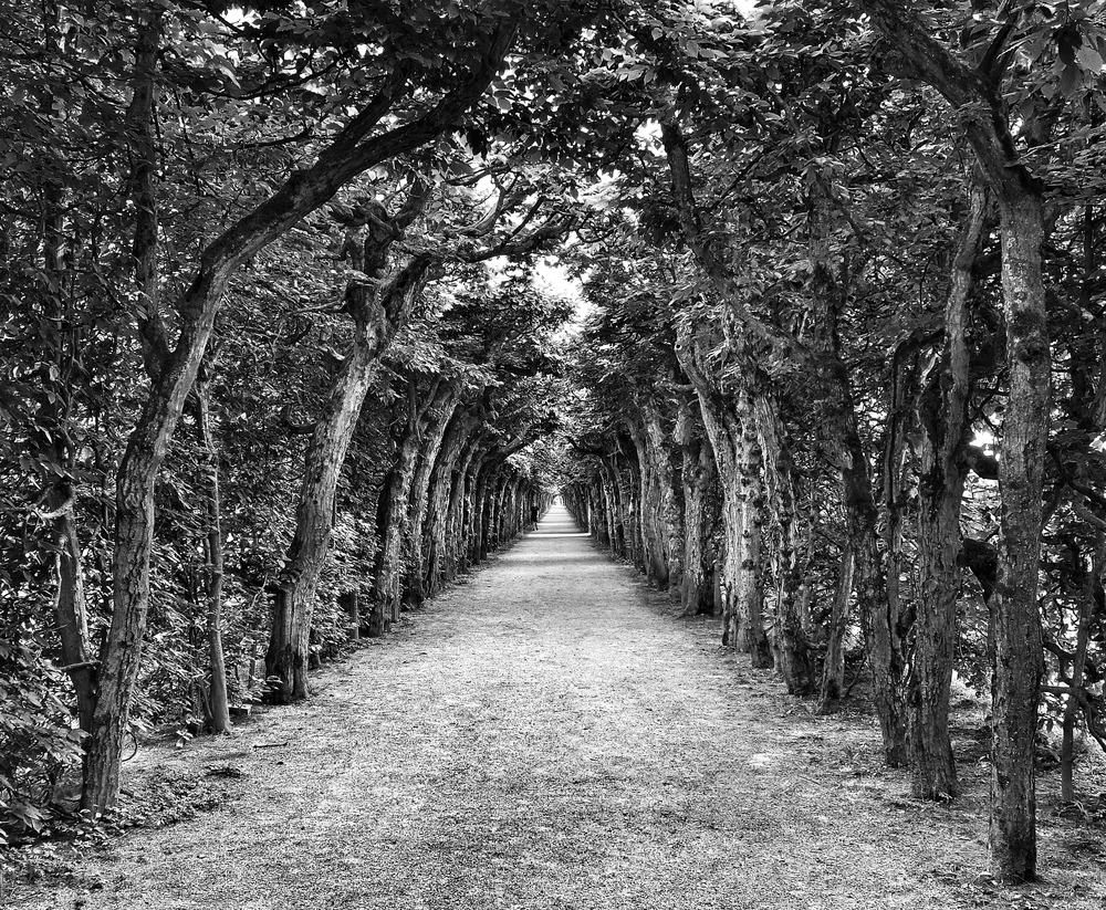 Eremitage Bayreuth 15June13 Sony RX100