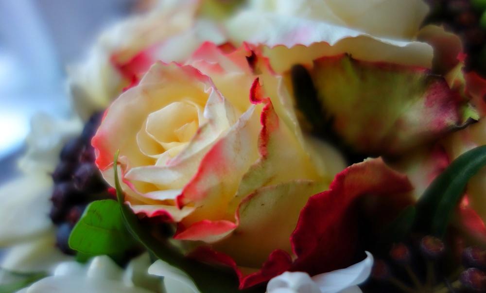 Roseandberry.jpg