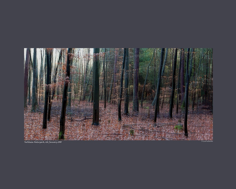 Japscreen Kelkheim.jpg