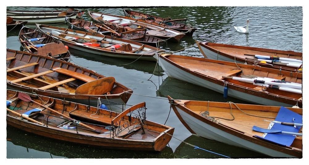 skiffs.jpg