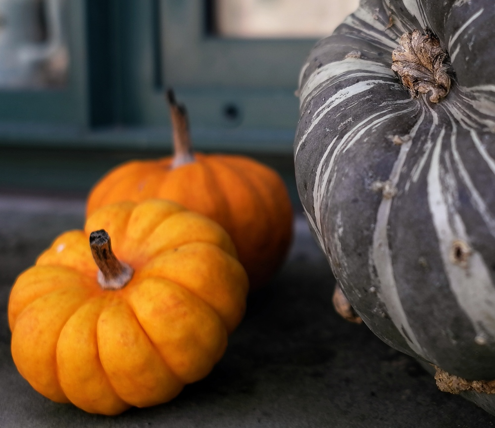 Sudhaus pumpkins