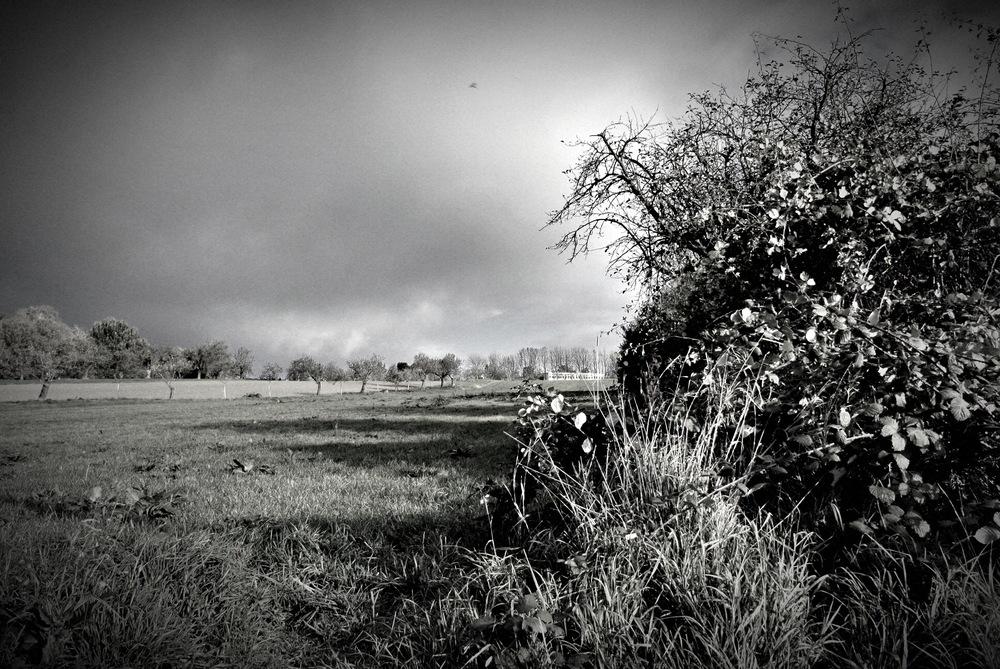 Storming Kronberg '13