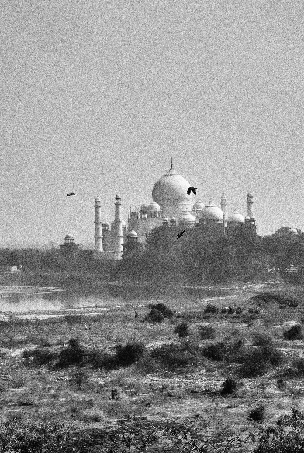The Taj Mahal on the Yamuna River from Agra's Old Fort (Nikon 1 V1, 10-100mm Nikkor)