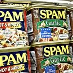 spam-150x150.jpg