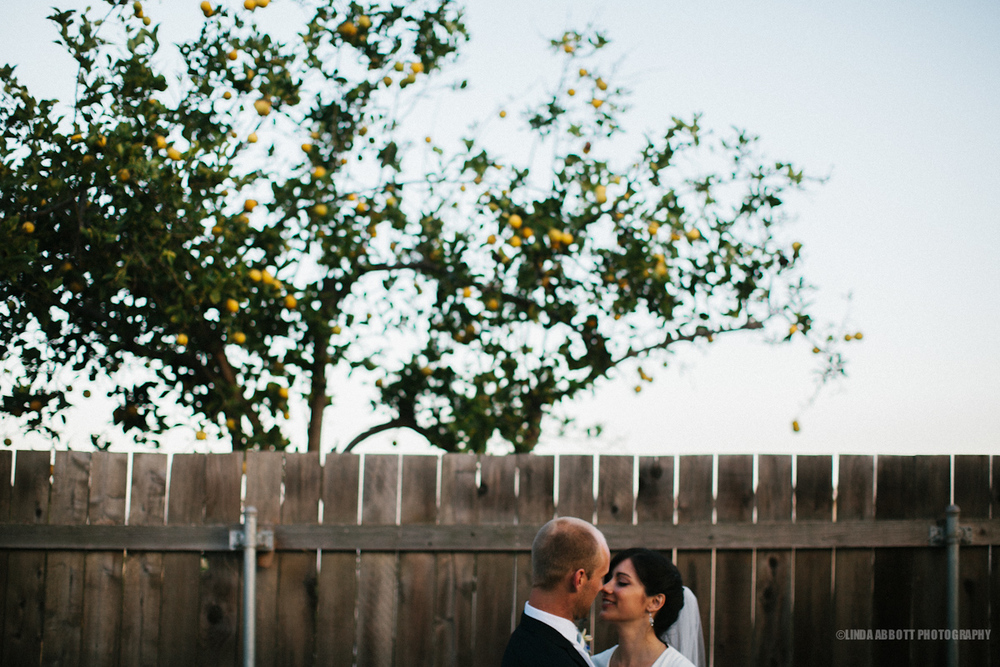 lindaabbottphotography_backyard_wedding_losangeles.jpg