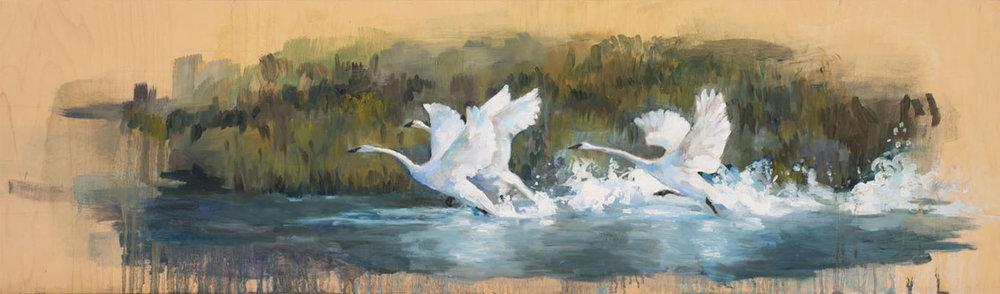 Three Swans.ML.jpg