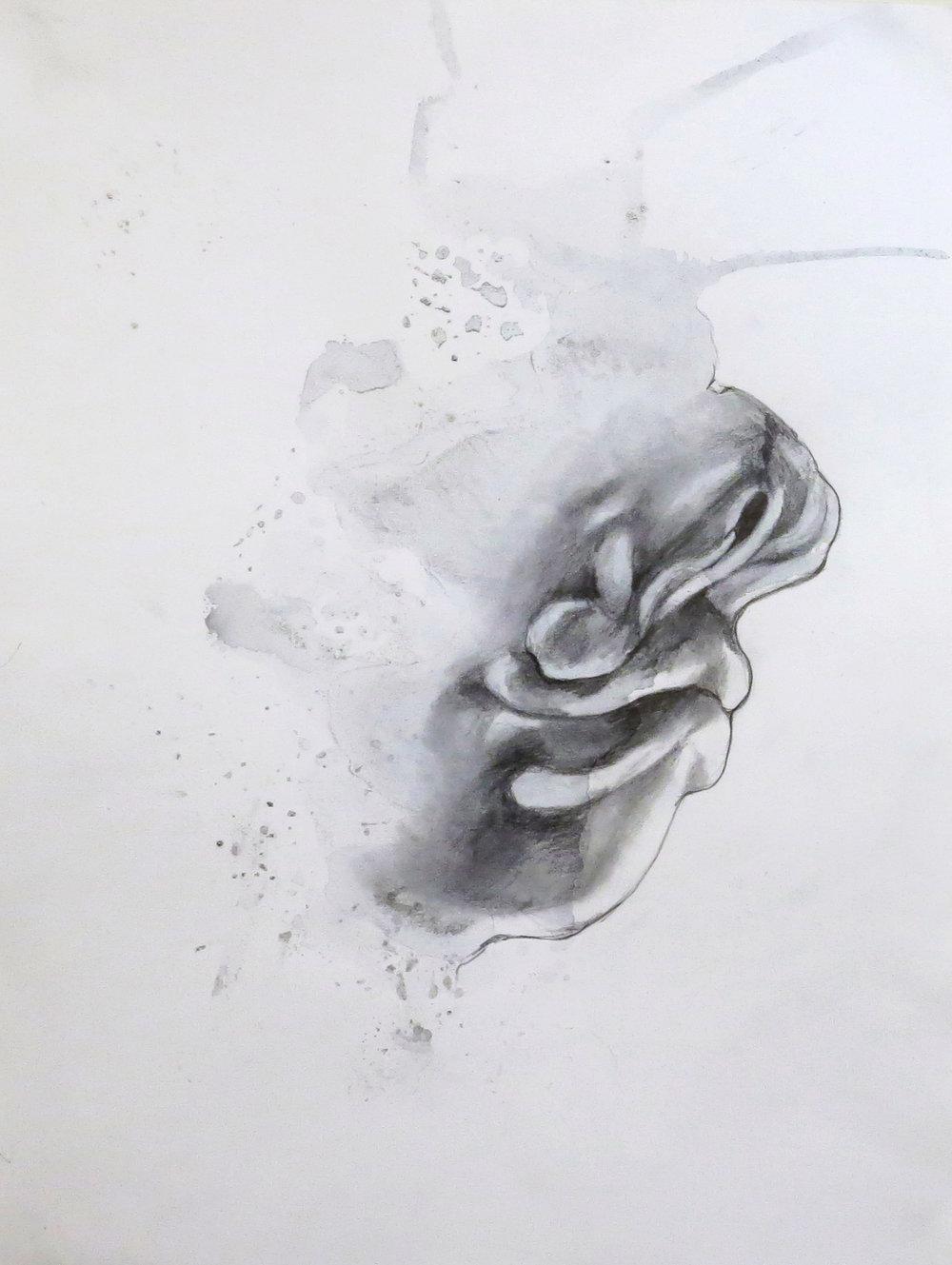 fetusface1.jpg