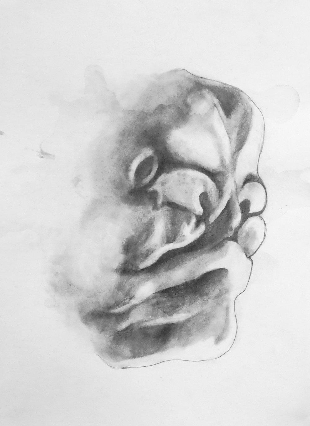 fetusface3.jpg